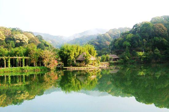 黄河故道森林公园