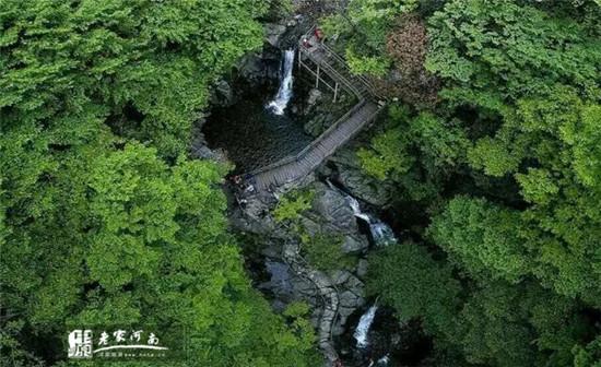 西九华山旅游风景区森林覆盖率达95%以上,并有多处原始森林
