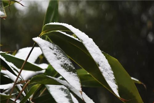 雪韵鸡冠洞,给你冬日专属浪漫