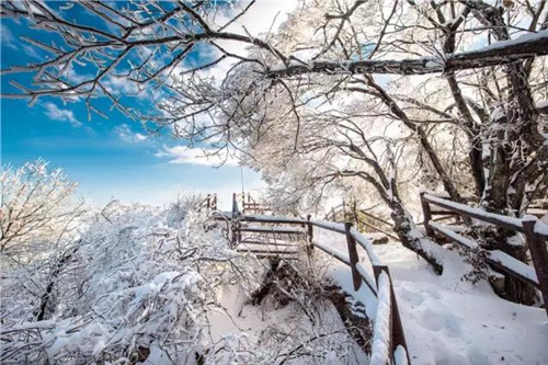 观雾凇,赏雪景,黛眉山邀您赴一场冰雪盛会