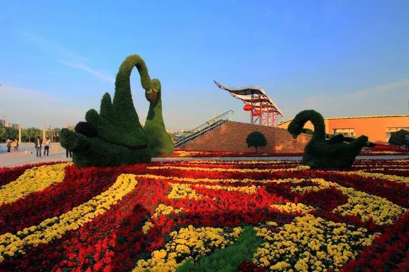 7月1日起,鄢陵花博园免费开放啦