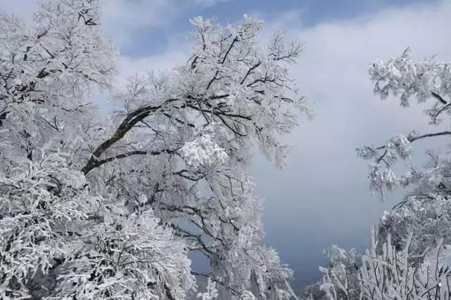 洛阳白云山国家级旅游度假区规划论证会在洛阳举行