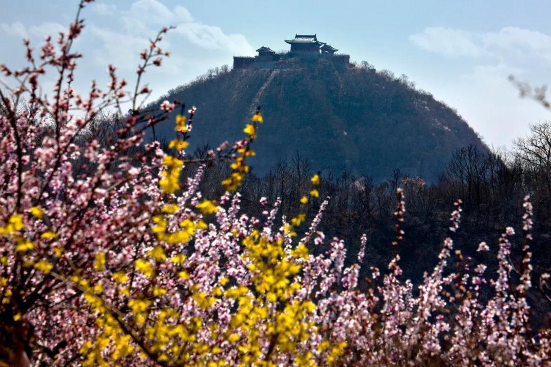 春意盎然,来云台山赴一场盛世古风的约会!