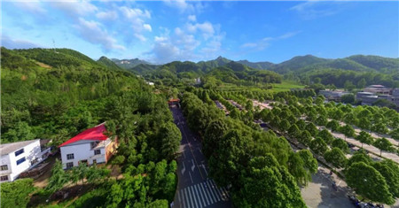 风雨二十六载,河南省鸡冠洞旅游发展有限公司挂牌成立!