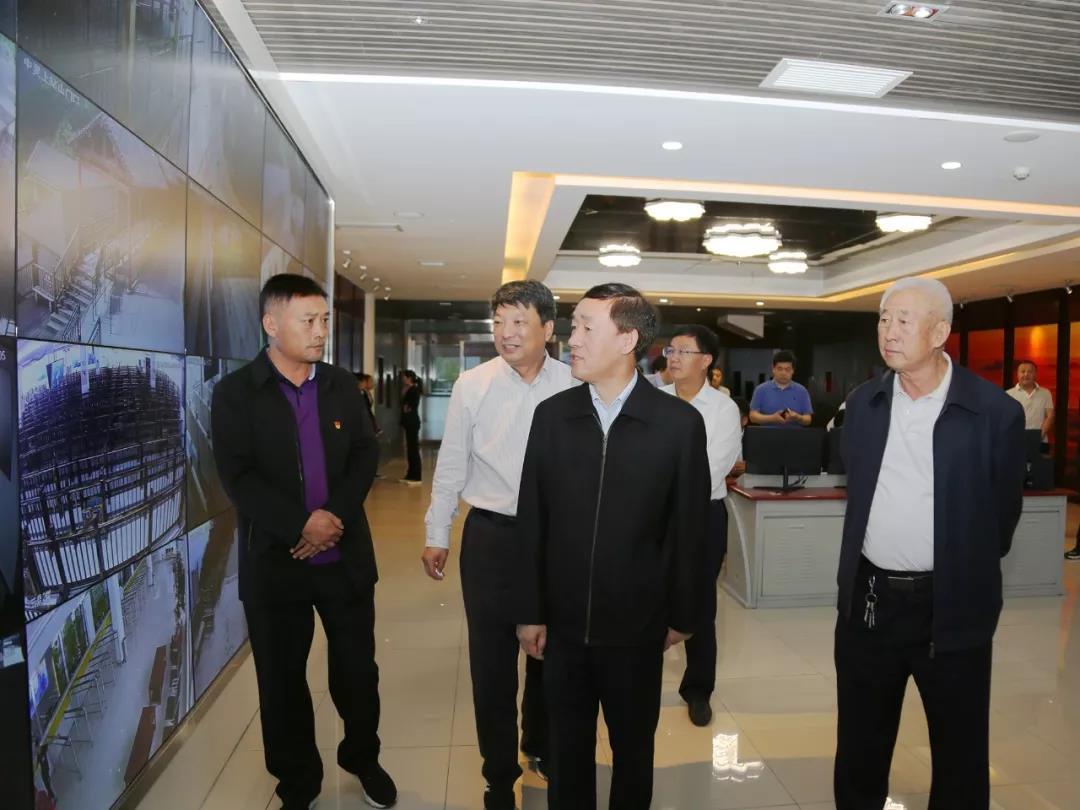 副省长戴柏华莅临老君山景区调研文化旅游融合创新及项目建设工作