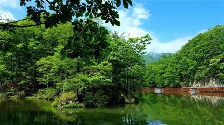 盛夏避暑好去处,人间仙境白云山邀您畅享清凉!